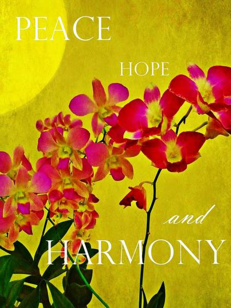 Peace Hope And Harmony Poster