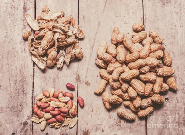 Peanut Shelling Poster