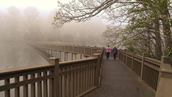 Pedestrian Bridge Early Morning Poster