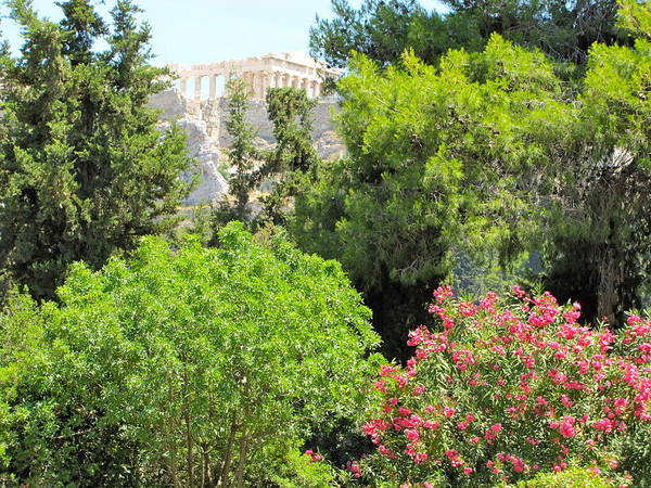 Peek Of The Parthenon Poster