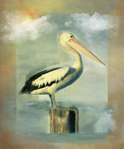 Pelican Sun  Poster