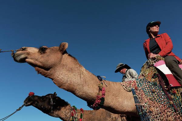People On The Camel, Pushkar Poster