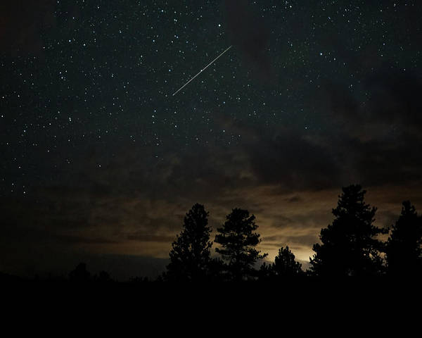 Poster featuring the photograph Perseid Meteor by Bill Gabbert