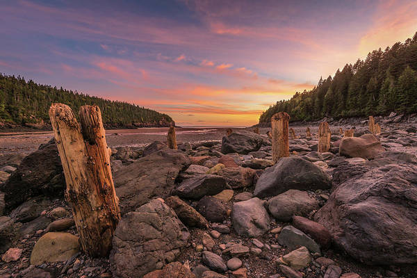 Pilings At Point Wolfe Poster