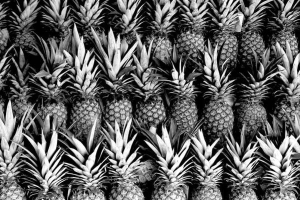 Pineapples In B/w Poster