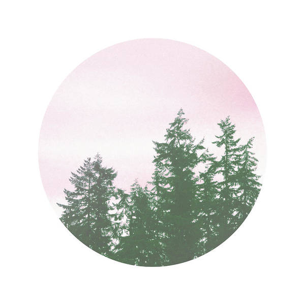 Pink Sky Trees- Art By Linda Woods Poster