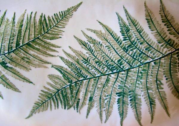 Platter With Ferns Poster