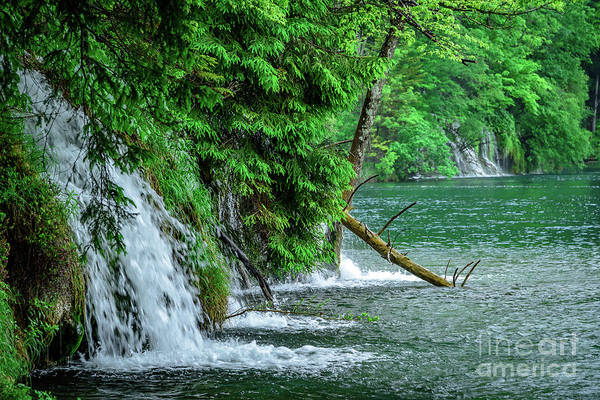 Plitvice Lakes National Park, Croatia - The Intersection Of Upper And Lower Lakes Poster