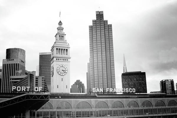 Port Of San Francisco Black And White- Art By Linda Woods Poster