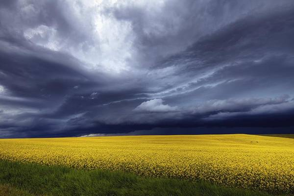 Poster featuring the photograph Prairie Storm by David Buhler