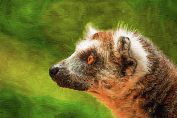 Profile Portrait Of Ring-tailed Lemur Poster