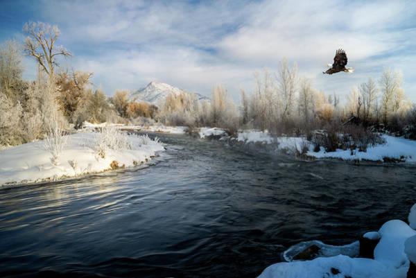 Provo River In Winter Poster