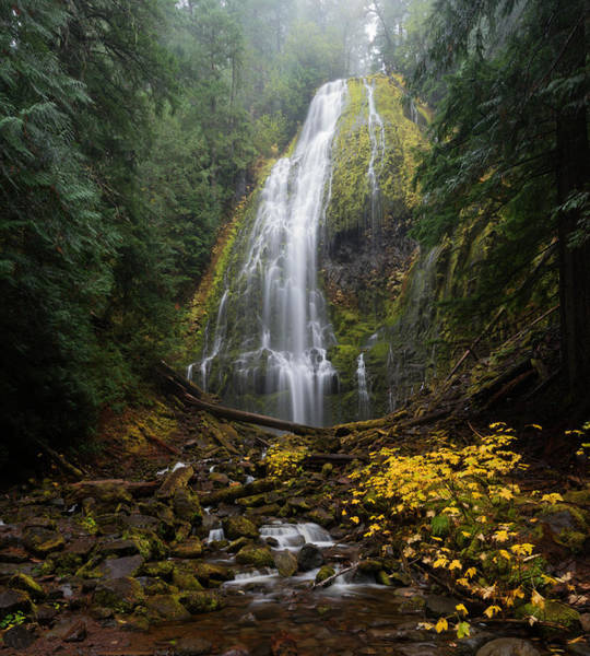 Proxy Falls In Autumn Poster