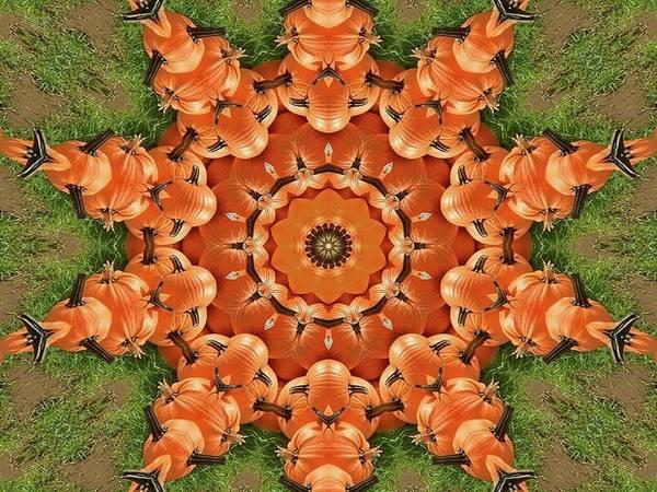 Pumpkins Galore Poster
