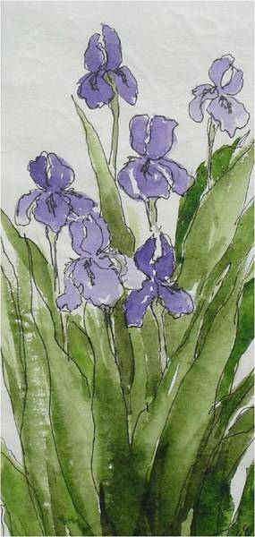 Purple Spring Poster