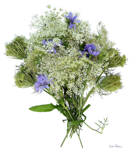 Queen Anne's Lace With Purple Flowers Poster