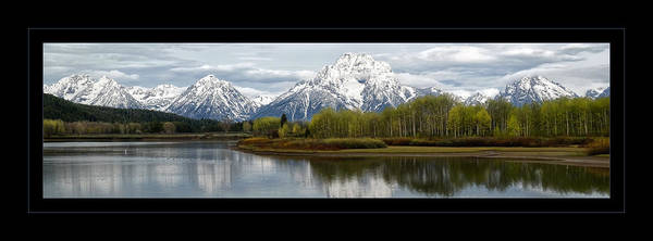 Quiet Morning At Oxbow Bend Poster