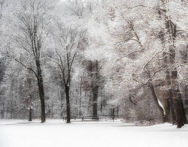 Quiet Winter  Poster