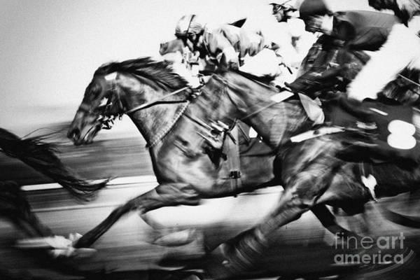 Racing Horses Poster