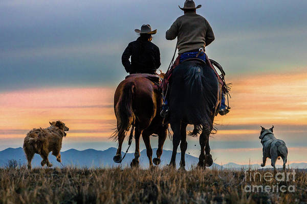 Racing To The Sun Wild West Photography Art By Kaylyn Franks Poster