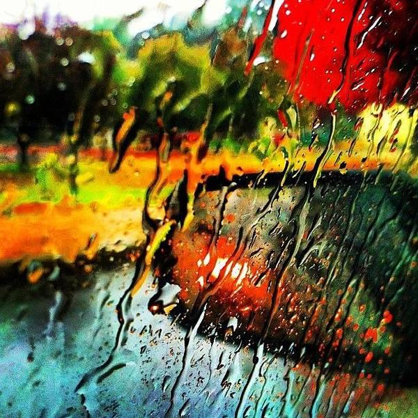 #rain #raindrops #wet #fall #leafs Poster