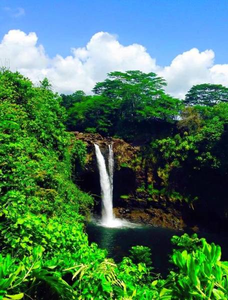 Rainbow Falls Hilo Hawaii Poster