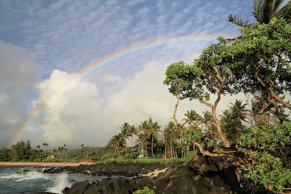 Rainbow Over The Beach Poster