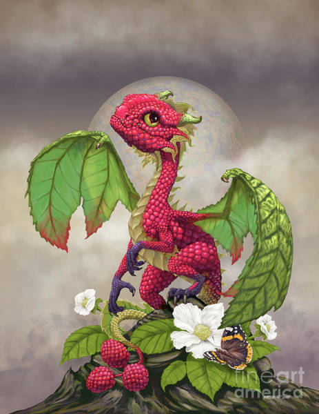 Raspberry Dragon Poster