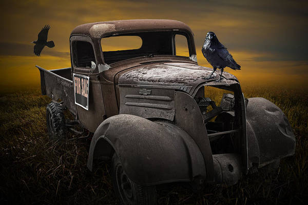 Raven Hood Ornament On Old Vintage Chevy Pickup Truck Poster