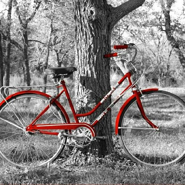 Red Bicycle II Poster