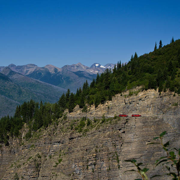 Red Buses, Glacier National Park Poster