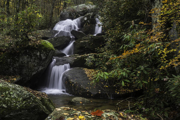 Red Leaf Waterfalls Poster