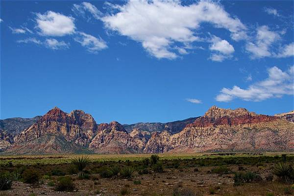 Poster featuring the photograph Red Rock Caynon2 by Ralph Jones