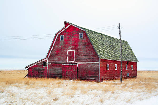 Red Winter Barn Poster