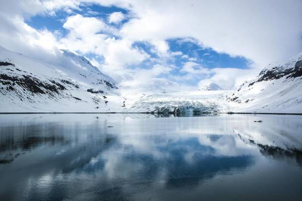 Reid Glacier Glacier Bay National Park Poster