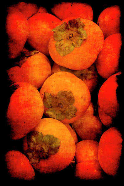 Poster featuring the photograph Renaissance Persimmons by Jennifer Wright
