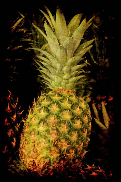 Poster featuring the photograph Renaissance Pineapple by Jennifer Wright