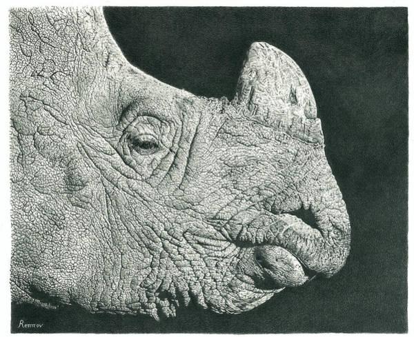 Rhino Pencil Drawing Poster