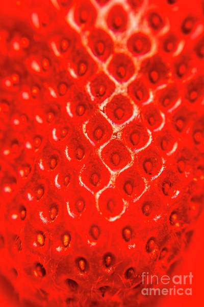 Ripe Red Fresh Strawberry Texture And Detail Poster