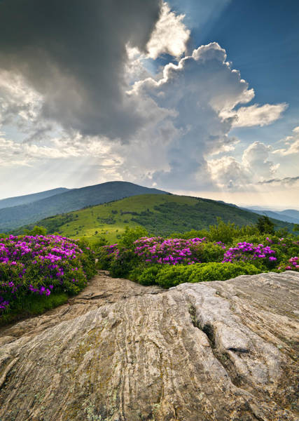 Roan Mountain Rays- Blue Ridge Mountains Landscape Wnc Poster