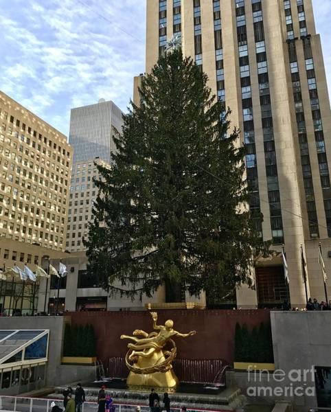 Rockefeller Center Christmas Tree Poster