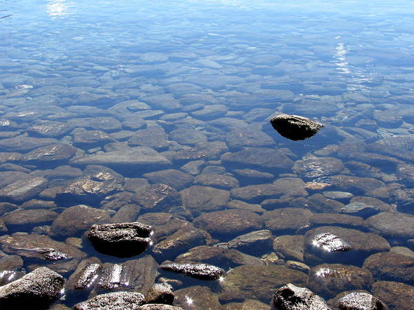 Rocks In Calm Waters Poster