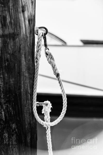 Rope Fence Fragment In Harbour Poster