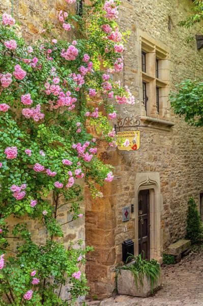 Roses In Bruniquel  Poster