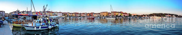 Rovinj Harbor And Boats Panorama Poster