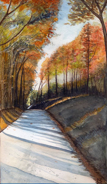 Rural Route In Autumn Poster