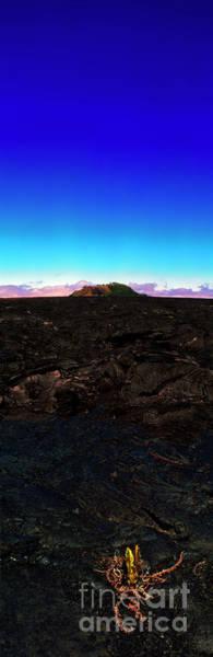 Saddle Road Humuula Lava Field Big Island Hawaii  Poster