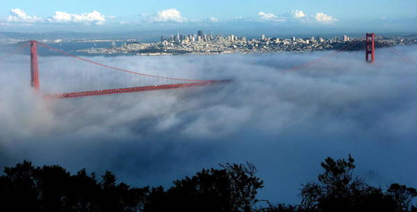 San Francisco Golden Gate Bridge Panoramic  Poster