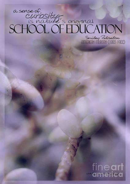 School Of Curiosity 07 Poster