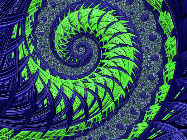 Seahawks Spiral Poster